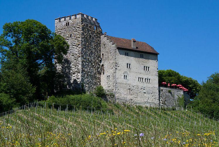 800px-habsburg-schloss