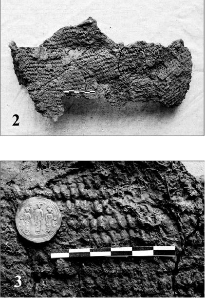Chain mail from Zurtaket's tomb (Georgia, X-XI c.). Bakradze I. Arms and armoury. P. 81, 97.